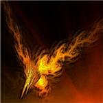 Phoenix's Photo